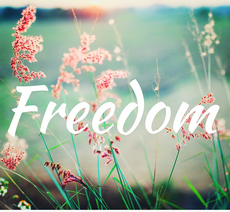 Freedom From Addiction –Priceless